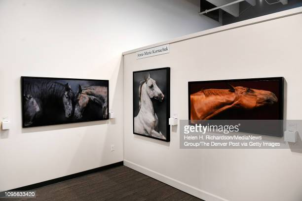 Artwork by AnneMarie Kornachuk is on display and for sale in the Coors Western Art Gallery on January 7 2019 in Denver Colorado The three pieces are...
