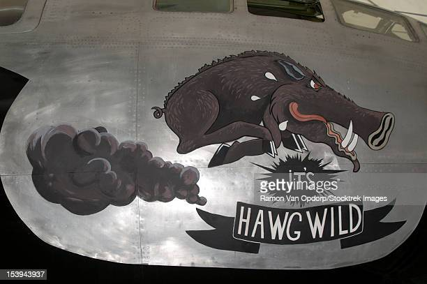 artwork painted on the side of a b-29 superfortress of the u.s. air force. - b 29 superfortress stock photos and pictures