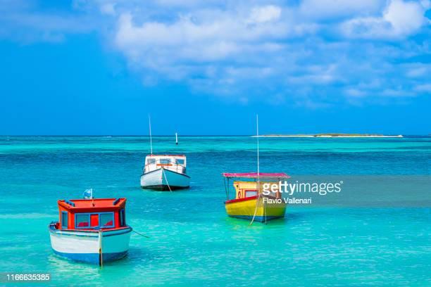 aruba, rodgers beach - mar caribe fotografías e imágenes de stock