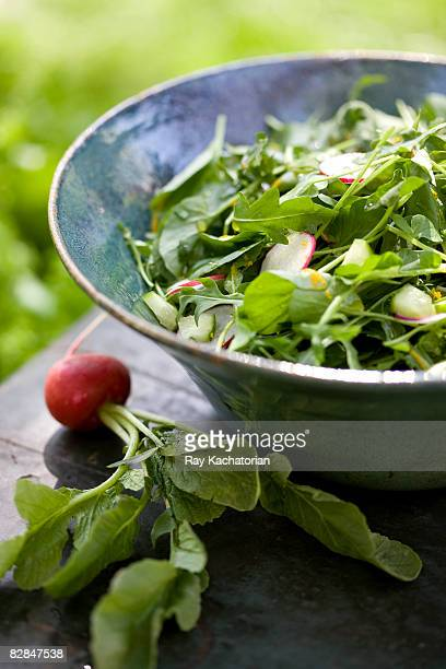 arugula salad - arugula stock pictures, royalty-free photos & images