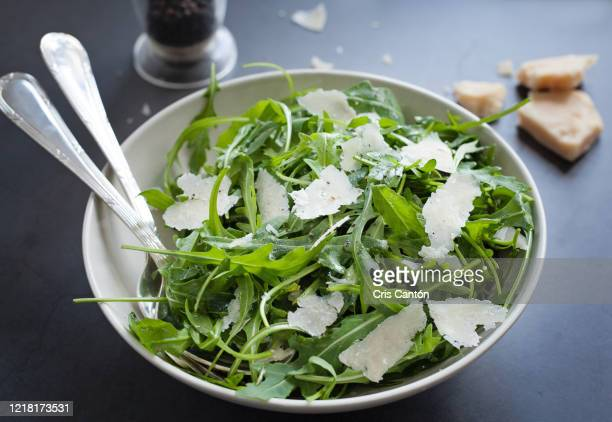 arugula salad with parmesan cheese - arugula stock pictures, royalty-free photos & images