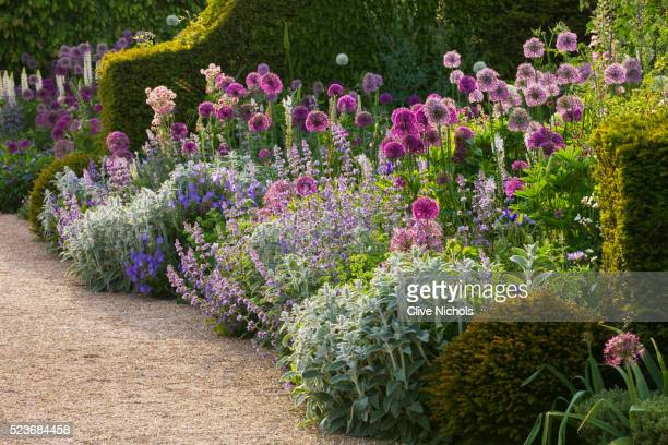 Arundel Castle Gardens, West Sussex: Asthal Manor, Oxfordshire: Border with Alliums - Allium Purple