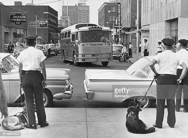 As a Trailways bus carrying Freedom Riders arrives in Jackson Mississippi police officers with dogs prepare to arrest and jail those on board