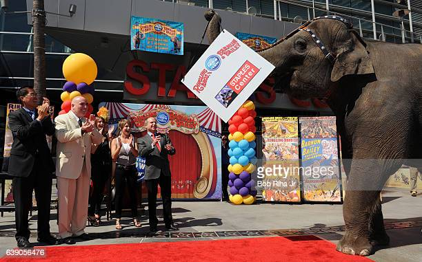 As an elephant carries a Ringling Bros and Barnum Bailey Circus sign Staples general manager Lee Zeidman Feld Entertainment CEO Kenneth Feld and...
