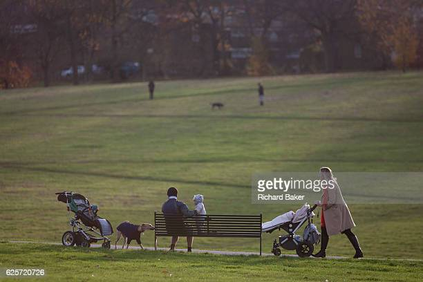 As another woman walks past on a path a father minds a baby who is taking interest in a pet dog standing seated on a park bench on 18th November 2016...
