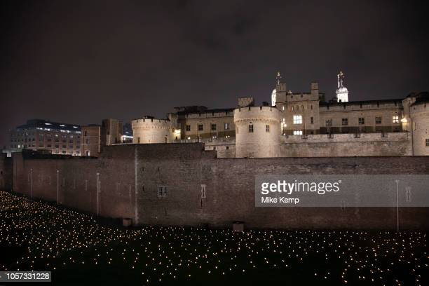 As commemoration of the centenary of the end of the First World War an installation at the Tower of London called Beyond the Deepening Shadow The...