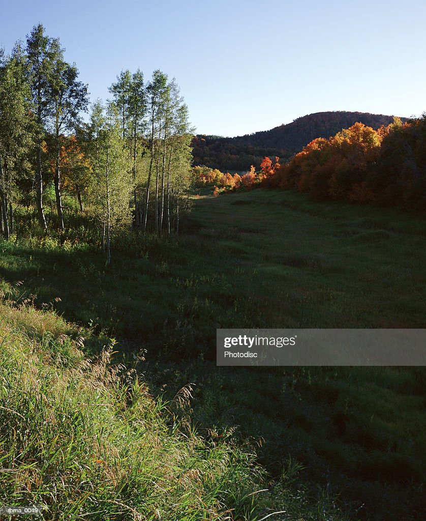 as evening approaches the mountains cast a shadow across the hill by the autumn colored trees : Stockfoto