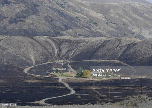 TOPSHOT As forest fires rage in western Canada some areas including this property in Ashcroft BC are spared from being burned when air tankers drop...