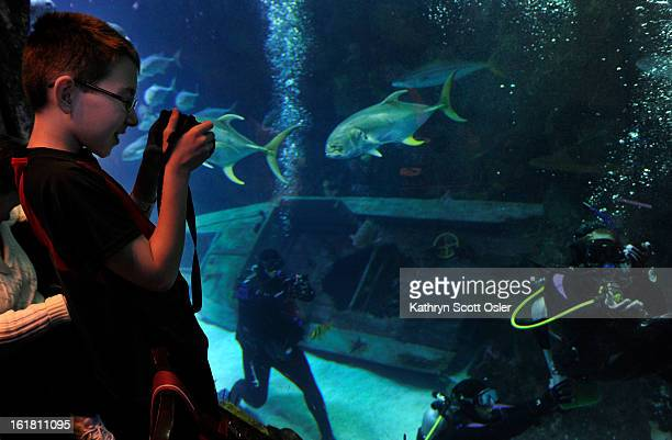 As his sister Brittney Martin who has spina bifida, makes her way under water, Treyton Martin snaps a few photos through the tank glass from the...