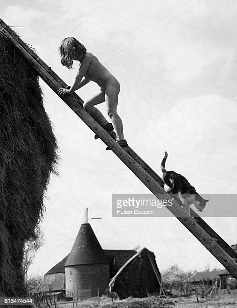 As naked Audrey Dunolly chases a cat up a ladder toward a haystack the cat climbs down Tonbridge Kent England UK