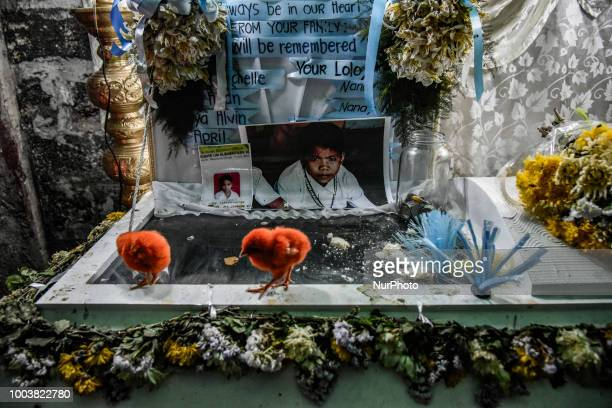 As part of a ritual to bother the conscience of the killer chicks are placed at the coffin of 13yearold Aldrin Pineda who was shot to death by a...