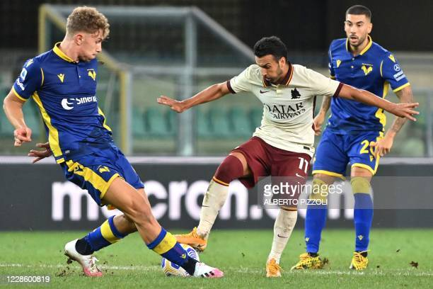 As Roma's forward Pedro challenges Verona's Italian midfielder Mattia Zaccagni and Verona's Italian defender Matteo Lovato during the Italian Serie A...