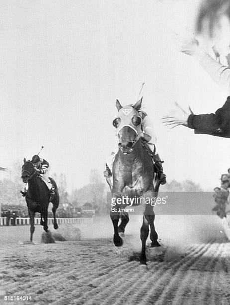 As Seabiscuit War Admiral Fought for Lead Baltimore Maryland Seabiscuit is on the inside fighting it out almost neck and neck with War Admiral for...