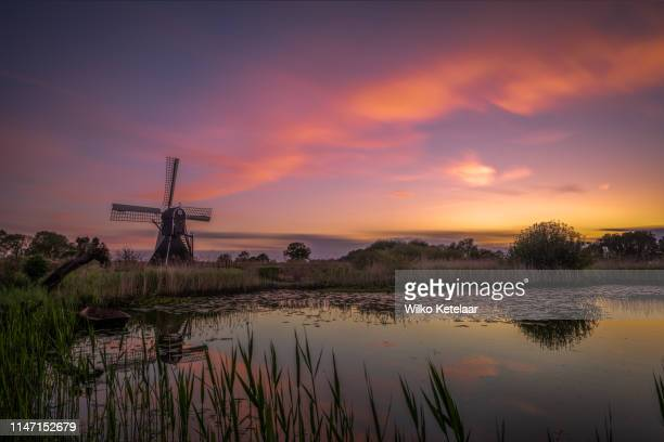 as the sun sets... - gelderland stock pictures, royalty-free photos & images