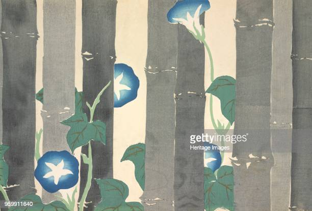 Asagao fromMomoyogusa The World of Things Vol I pub1909 colour block woodcut Morning Glory