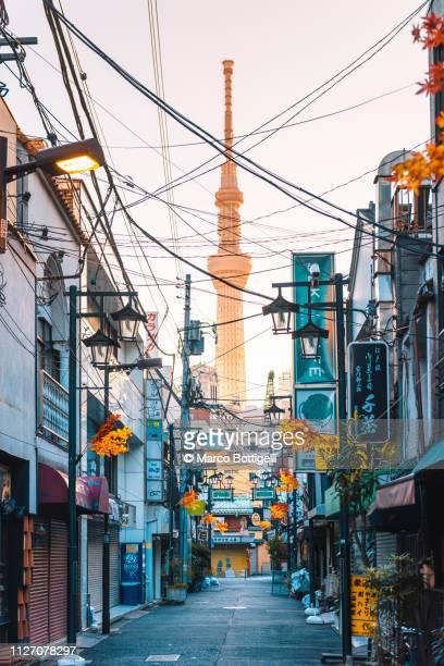 asakusa district and tokyo skytree, tokyo - 路地 ストックフォトと画像