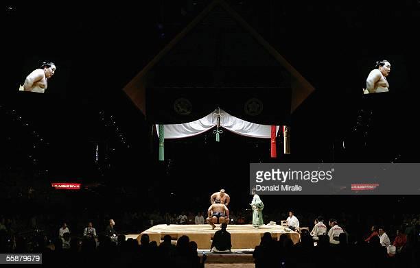 Asashoryu Yokozuna Grand Champion Sumo Wrestler of Japan stares down a competitor underneath the Dohyo sumo ring during the Grand Sumo Championship...