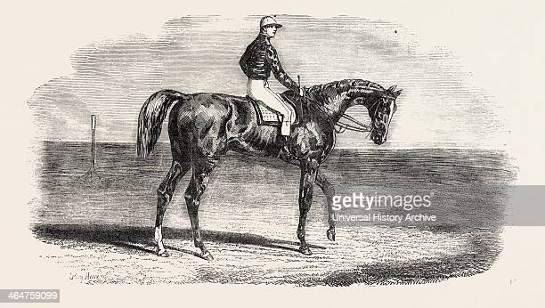 Woolwich The Winner Of The Emperor's Vase Little Jack Made All The Running Woolwich Waiting On Him Into The Distance And Winning Cleverly By A Length...