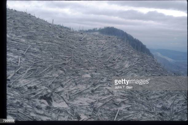 Ash covers the landscape May 23 1980 in Washington State On May 18 an earthquake caused a landslide on Mount St Helens'' north face taking off the...