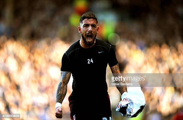 Ashkan Dejagah of Fulham celebrates after scoring the opening goal during the Barclays Premier league match between Fulham and Newcastle United at...