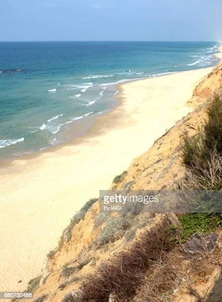 ashkelon cliff and oastline, blue sea, white-yellow sand - アシュケロン ストックフォトと画像