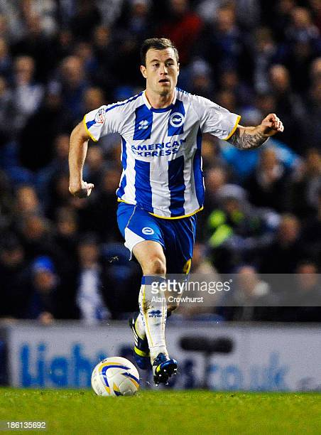 Ashley Barnes of Brighton during the Sky Bet Championship match between Brighton Hove Albion and Watford at The Amex Stadium on October 28 2013 in...
