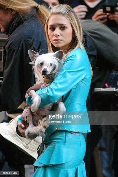Ashley Olsen during New York Minute on Location in New York City October 3 2003 at New York City in New York NY United States