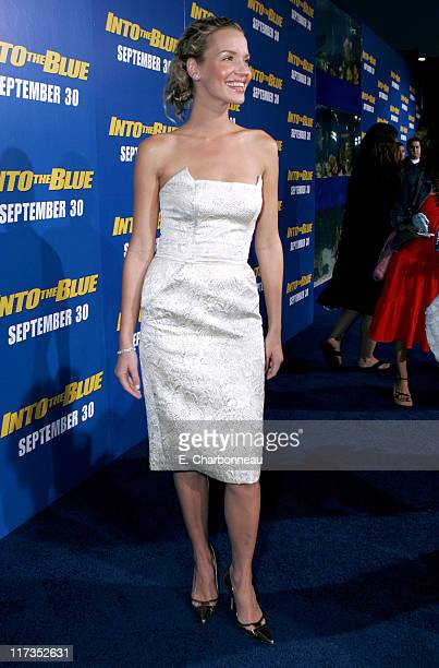 """Ashley Scott during MGM Pictures and Columbia Pictures """"Into the Blue"""" Premiere - Red Carpet at Mann Village in Westwood, California, United States."""