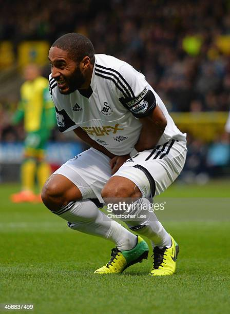 Ashley Williams of Swansea holds his groin area after he clashes with Johan Elmander of Norwich during the Barclays Premier League match between...