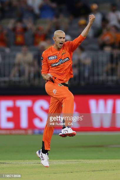 Ashton Agar of the Scorchers celebrates after taking the wicket of Tom Cooper of the Renegades during the Big Bash League match between the Perth...