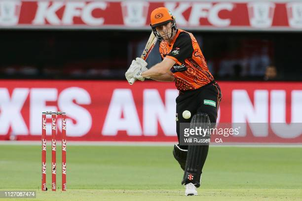 Ashton Turner of the Scorchers bats during the Big Bash League match between the Perth Scorchers and the Melbourne Stars at Optus Stadium on February...