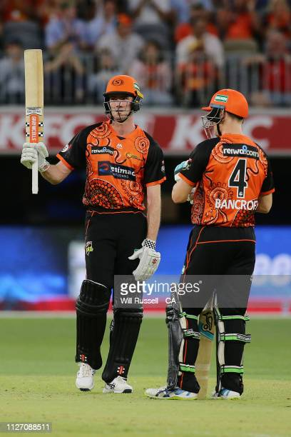 Ashton Turner of the Scorchers celebrates after reaching his half century during the Big Bash League match between the Perth Scorchers and the...
