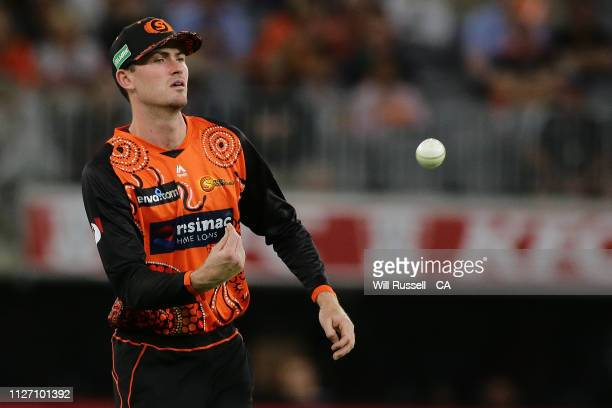 Ashton Turner of the Scorchers fields during the Big Bash League match between the Perth Scorchers and the Melbourne Stars at Optus Stadium on...