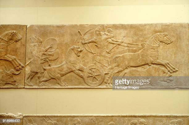 Ashurnasirpal II killing lions, c645 BC-635 BC. The royal Lion Hunt of Ashurbanipal. Assyrian palace relief from the North Palace of Nineveh,...