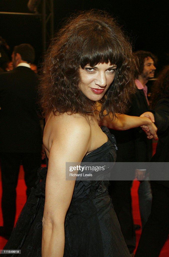 "2007 Cannes Film Festival - ""Go Go Tales"" Premiere : ニュース写真"