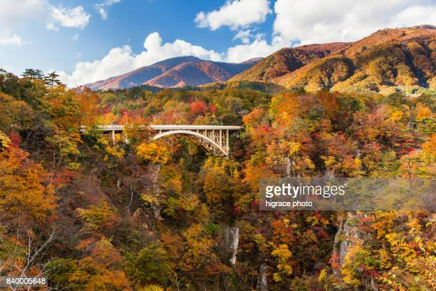 Asia - Beautiful landscape.The Naruko-kyo Gorge is a large ravine with a depth of about 100 meters . It is also known as one of the best spots for viewing beautiful colored leaves in Miyagi Prefecture.