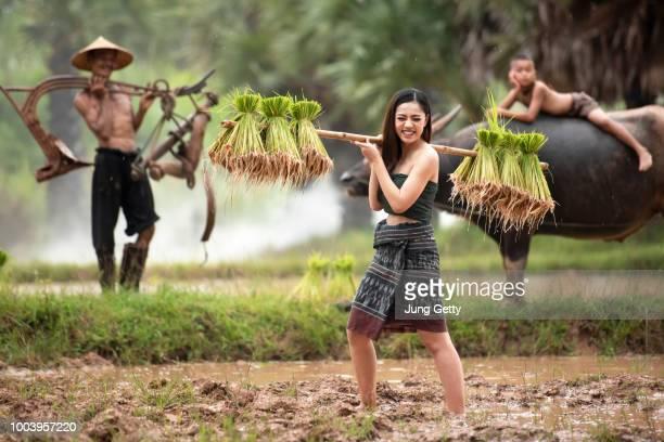 asia girl farmer carrying rice seed - asian farmer stock-fotos und bilder