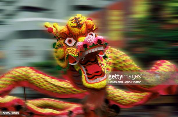 Asia, Singapore, Chinese Dragon Dance