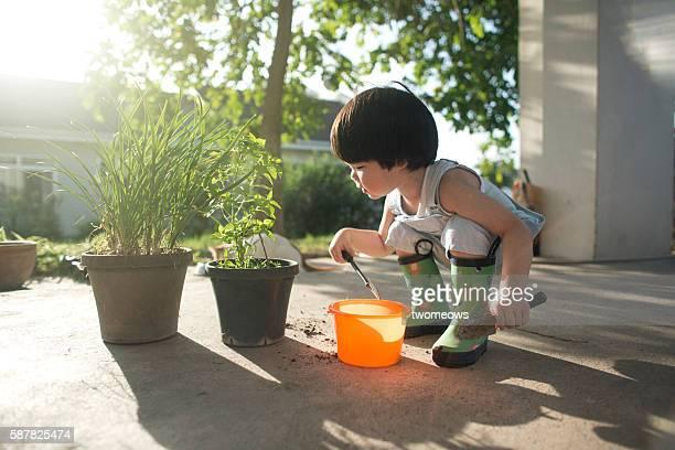 Asian 2 to 3 years old toddler boy doing gardening work.