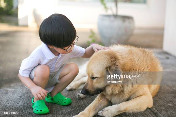 asian boy looking bonding time with pet dog. - hairy asian stock pictures, royalty-free photos & images