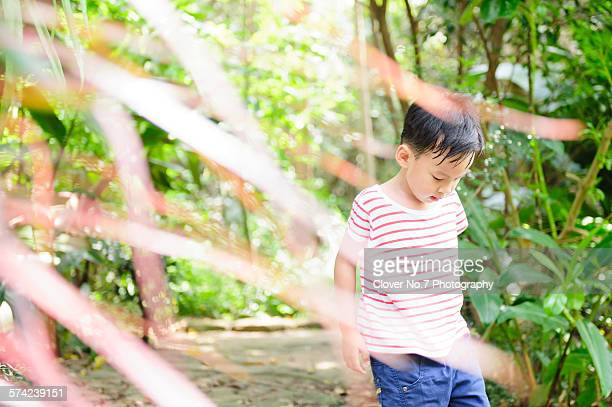 asian boy walking in the forest. - 4 leaf clover stock-fotos und bilder