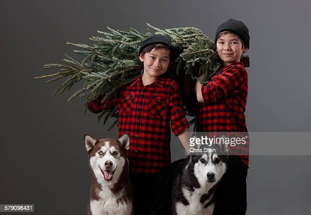 Asian Boys getting a Christmas Tree