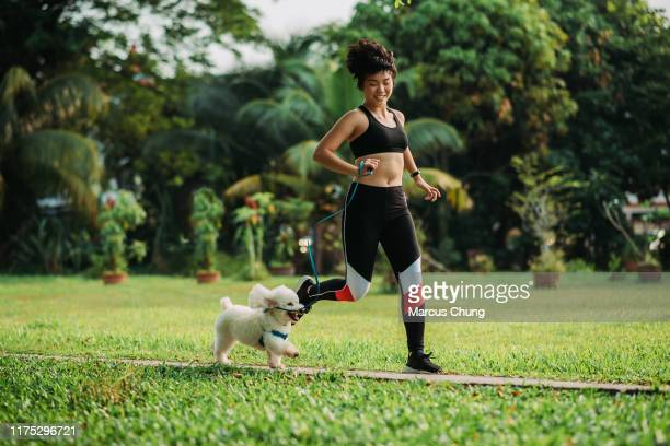 asian chinese female trained her dog running and jogging at public park during morning - soltanto un animale foto e immagini stock