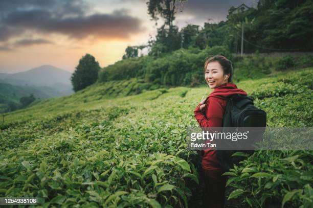 asian chinese tourist beautiful woman with hooded shirt at cameron highland tea crop plantation enjoying the beauty of nature and freshness of air in the morning