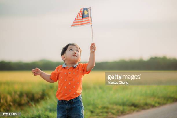 asian chinese young boy looking and waving with malaysia flag at padi field during morning sunlight - happy flag day stock pictures, royalty-free photos & images