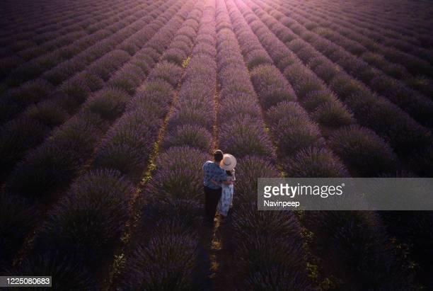 asian couple in lavender field, provence, france - アルプドオートプロバンス県 ストックフォトと画像