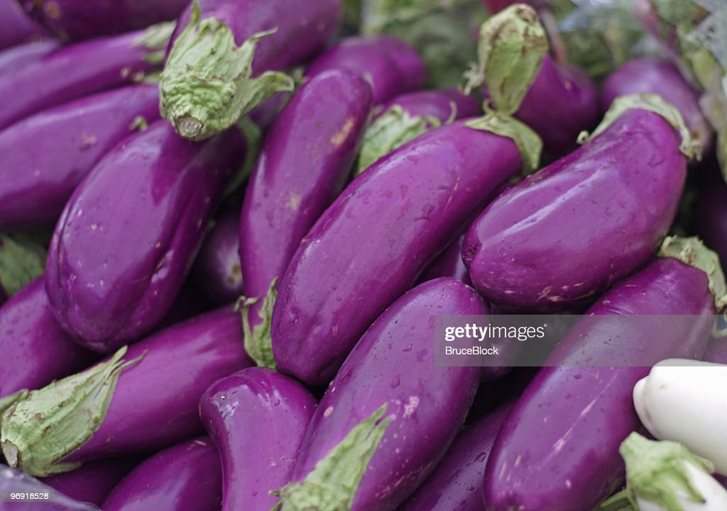 Asian Eggplants : Stock Photo