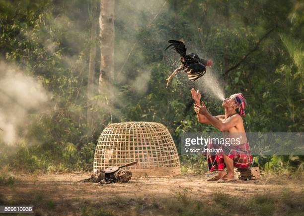 asian farmer and chicken - chicken bird stock photos and pictures