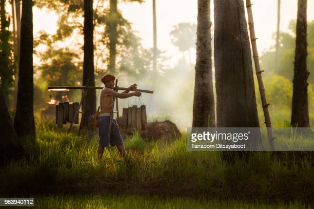 asian farmer carrying bamboo cylinder. - asian farmer ストックフォトと画像