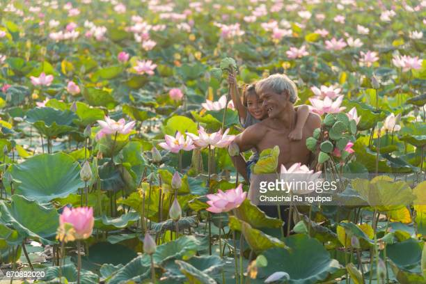 Asian farmer man thailand in asia and daughter keep lotus flower in lotus feild farm in Thailand .